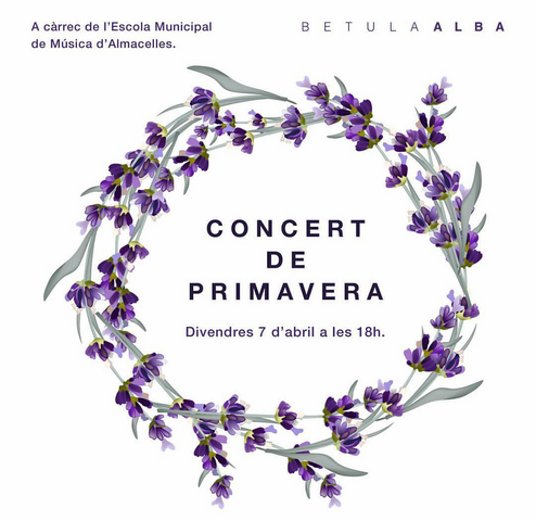 concert primavera cartell x blog